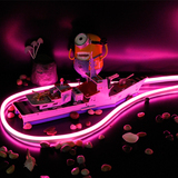 Ultra-Thin 120V/230V/12V/24V LED Neon Flex Rope Light